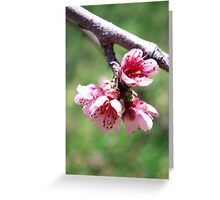 Lean on me when you're not strong. Greeting Card