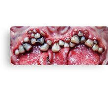 brush yer teeth Canvas Print