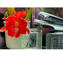 The Sonic Bloom Boom Room - Texturized Photographic Print
