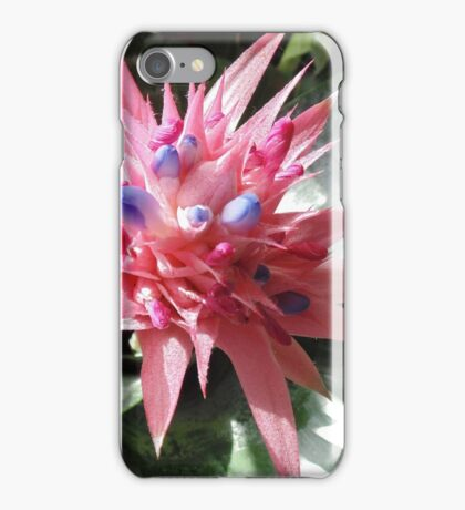 Pointy Pink Pedals iPhone Case/Skin