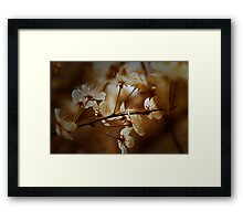 Spring Is In The Air - Floral Landscape Framed Print
