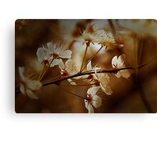 Spring Is In The Air - Floral Landscape Canvas Print