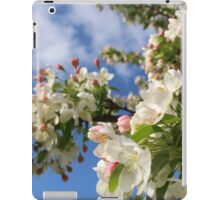 Spring Crabapple Blossoms  iPad Case/Skin