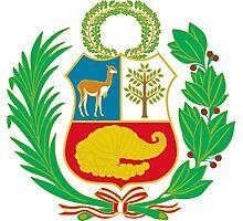 Peru Flag Photographic Print