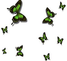 Green Butterflies by Gypsykiss