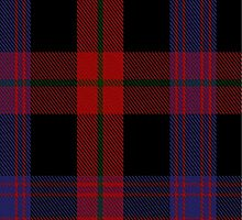 00406 Brown Tartan  by Detnecs2013