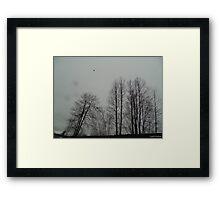 Murder Nest Framed Print
