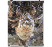 Cicada Exoskeleton iPad Case/Skin