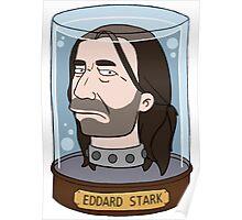 Eddard Stark in Color Poster