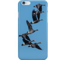 Greater White-Fronted Geese In Flight iPhone Case/Skin