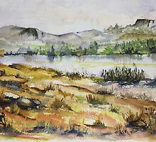 The Magalies River in Skeerpoort by Maree  Clarkson