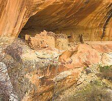 Monarch Cave Ruins, Utah by Tamas Bakos