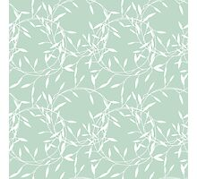 Pastel Green Leaves Photographic Print