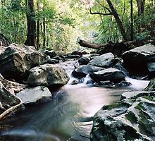 Claudie River, Cape York by wildimagenation