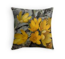 Yellow tulips in the grey Throw Pillow
