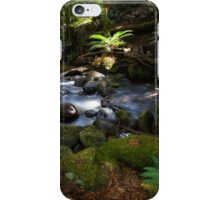 Taggerty Cascades #1 iPhone Case/Skin