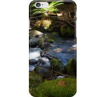 Taggerty Cascades #3 iPhone Case/Skin
