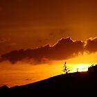 Sunlit Hills by JordanRyan