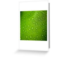 Counting the Raindrops Greeting Card