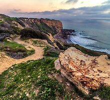 Trail to the Coast by Matt Wixted