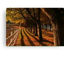 Fall Fence Line Canvas Print