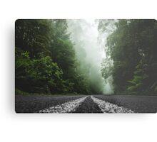 Misty Otway Forest Metal Print