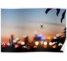 Spiderblur Poster