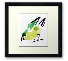 watercolor drawing bird, robin at white background Framed Print