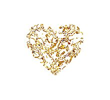 Lace Golden Heart Photographic Print