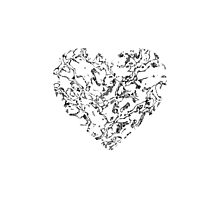 Lace Silver Heart Photographic Print