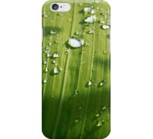 Raindrops on a green leaf iPhone Case/Skin