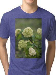 white hydrangea Tri-blend T-Shirt