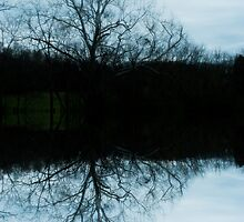 Reflection by solareclips~Julie  Alexander
