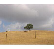 Umbria Photographic Print