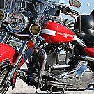 2009 Daytona Womens MDA Ride by Luuezz