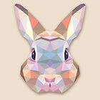 Rabbit Hare Animals Gift by MrNicekat