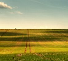 Uffington Field by igotmeacanon