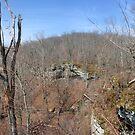 Stone Fort Trail (2) by Daniel Owens