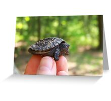 Baby Snapper Greeting Card