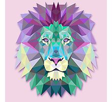 Lion Animals Gift Photographic Print