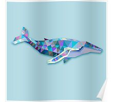 Whale Animals Gift Poster