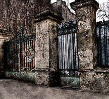 Gate by shadycat