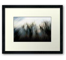 Breath of a Tree Framed Print