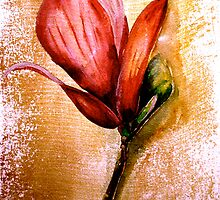 Flowers...Magnolia by ©Janis Zroback