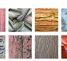 Natural Surface Textures Features Apr 8 2015 by Marilyn Cornwell