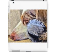 Nap Time iPad Case/Skin