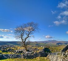 Between Settle and Grassington by Glen Allen