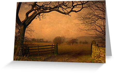 Wycoller Country Park by mariarty