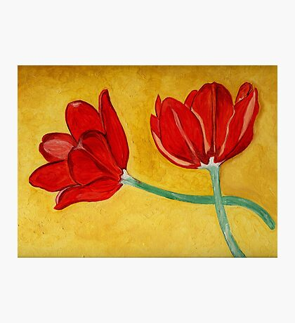 Tulips with Love, Happy Together  Photographic Print