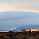 Owens Valley Rainbow by Nolan Nitschke